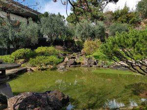 Il laghetto e la cascata del giardino dell'istituto giapponese di roma